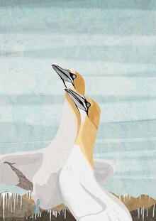 Katherine Blower, Gannets (Großbritannien, Europa)