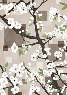 Katherine Blower, white Blossoms (United Kingdom, Europe)
