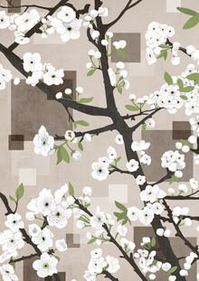 Katherine Blower, white Blossoms (United Kingdom, Europe)