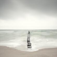 Holger Nimtz, on the coast (Germany, Europe)