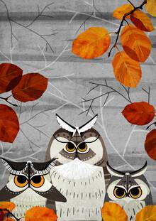 Katherine Blower, Owl Moths (United Kingdom, Europe)