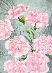 Katherine Blower, Pink Carnations (Großbritannien, Europa)