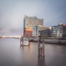 Dennis Wehrmann, Elbphilharmonie Hamburg (Deutschland, Europa)