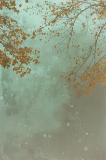 Andrea Hansen, Herbst und Nebel (Deutschland, Europa)
