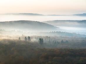 Felix Wesch, Herbstmorgen (Deutschland, Europa)
