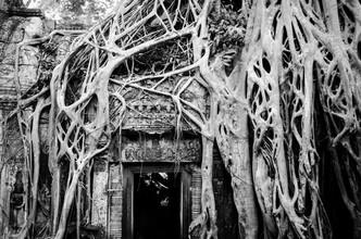 Martin Koch, Ruinen von Angkor (Kambodscha, Asien)