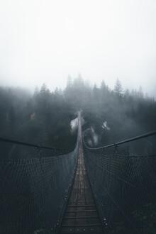 Jonas Hafner, Handeckfall bridge (Switzerland, Europe)