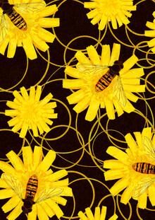 Wasps - fotokunst von Katherine Blower