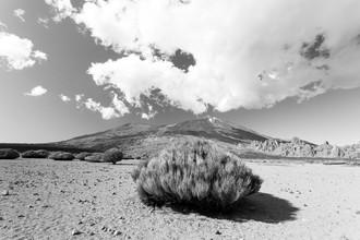 Angelika Stern, El Teide, Teneriffa (Spanien, Europa)
