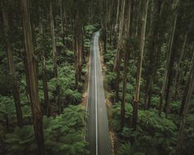 Fin Matson, Perfect Road (Australia, Oceania)