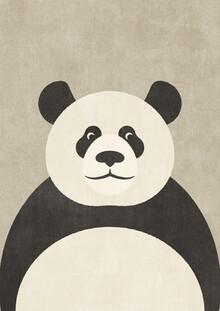 Daniel Coulmann, FAUNA Panda (China, Asien)