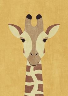 Daniel Coulmann, FAUNA Giraffe (Nigeria, Afrika)