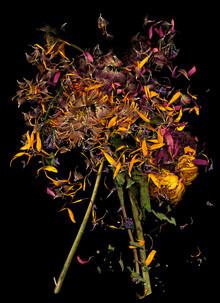 Kornelia - fotokunst von Ramona Reimann