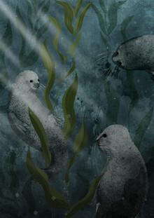 Seals - fotokunst von Katherine Blower