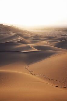 Christian Hartmann, Lost in desert (Western Sahara, Africa)