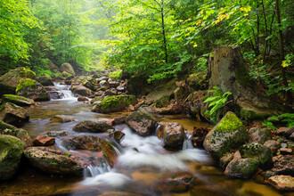 Dave Derbis, Summer Creek (Germany, Europe)
