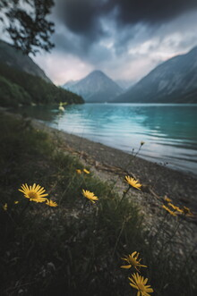 Lukas Litt, Flowers are calling (Österreich, Europa)
