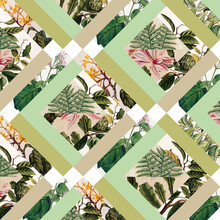 Bianca Green, Cubed Vintage Botanicals (Germany, Europe)