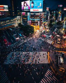 Dimitri Luft, Shibuya crossing (Japan, Asien)