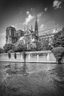 Melanie Viola, PARIS Kathedrale Notre-Dame (Frankreich, Europa)