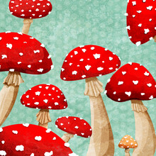 Katherine Blower, Mushrooms (United Kingdom, Europe)