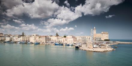 Norbert Gräf, Blick über den Hafen von Trani in Italien (Italien, Europa)