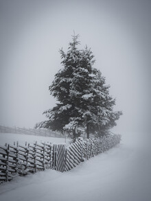 Bernd Grosseck, Winteratmosphäre (Österreich, Europa)