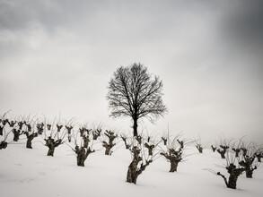 Bernd Grosseck, Winterstimmung (Österreich, Europa)
