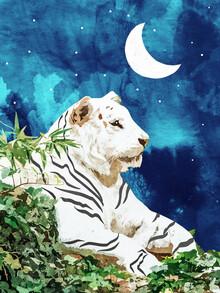 Uma Gokhale, Moonbath (Indien, Asien)