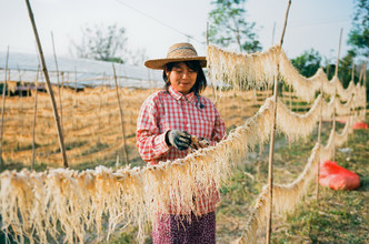 Jim Delcid, Myanmar Inle Lake (Myanmar, Asia)
