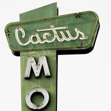 Vera Mladenovic, Cactus (United States, North America)