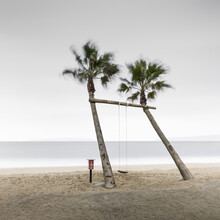 Ronny Behnert, Palm tree swing (Japan, Asia)