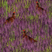 Katherine Blower, Purple heather (Großbritannien, Europa)