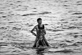 Victoria Knobloch, Der Reiter im See (Kirgistan, Asien)