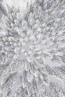 Studio Na.hili, Snowy Forests (Tschechische Republik, Europa)
