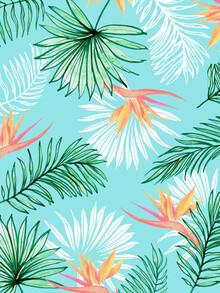 Uma Gokhale, Tropic Palm (India, Asia)