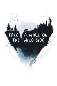 Balazs Solti, Walk on the wild side (Ungarn, Europa)