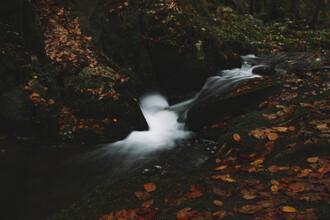 Nadja Jacke, Silver creek in Teutoborg Forest (Germany, Europe)