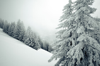 Nicklas Walther, Icescape II (Österreich, Europa)