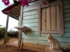 Aurica Voss, Lazy Afternoon (Kuba, Lateinamerika und die Karibik)