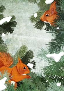 Katherine Blower, Red Squirrels (Großbritannien, Europa)