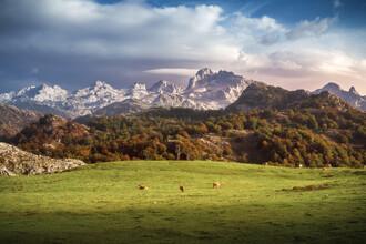 Jean Claude Castor, Asturien Picos de Europa Gebirgsmassiv mit Weidegrund (Spanien, Europa)