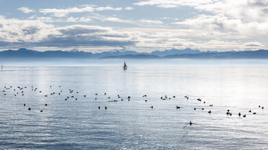Nicklas Walther, lake of constance (Germany, Europe)