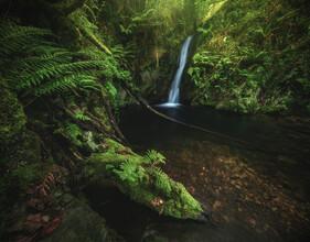 Jean Claude Castor, Asturien Wasserfall Cascada Gorgollon mit Dschungel (Spanien, Europa)