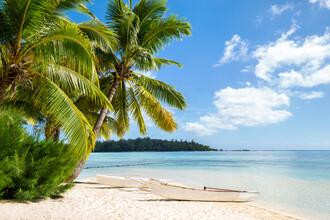 Jan Becke, Summer holiday at the beach on Bora Bora (French Polynesia, Oceania)
