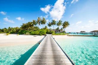 Jan Becke, Urlaub auf einer tropischen Insel auf den Malediven (Malediven, Asien)