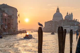 Jan Becke, Sunrise at the Canal Grande in Venice (Italy, Europe)