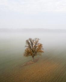 Giedra Bartas, Solitude (Lithuania, Europe)