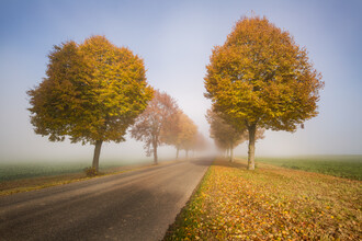 Nicklas Walther, Endless road (Germany, Europe)