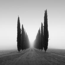 Poggio Covili | Toskana - fotokunst von Ronny Behnert